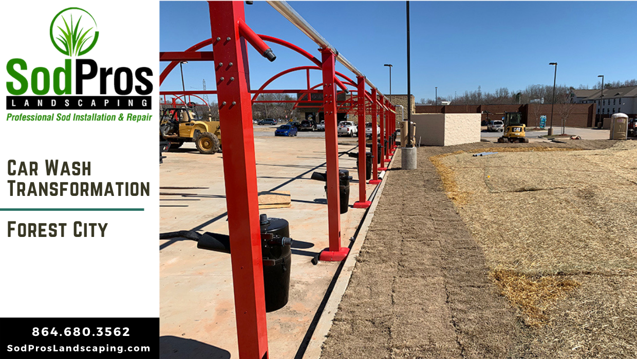 Forest City Car Wash Transforms with Sod Installation