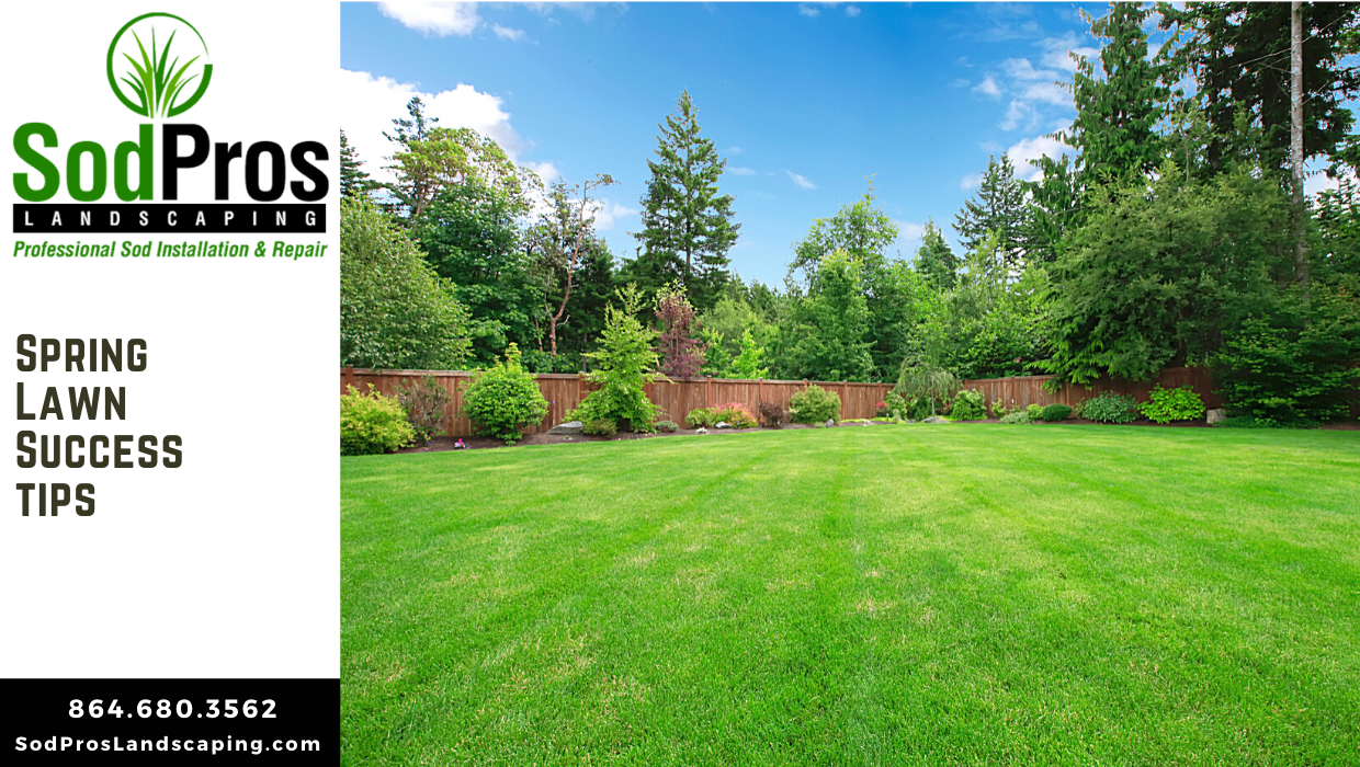 Spring Lawn Success Tips